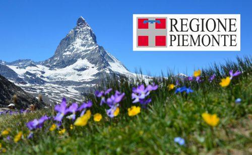 Pubblicato l'elenco dei beneficiari dei contributi della Regione Piemonte